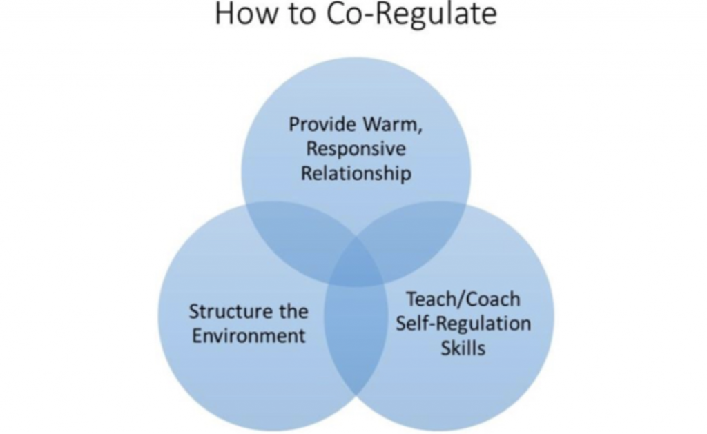 how to co-regulate